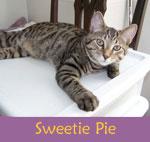 SweetiePie